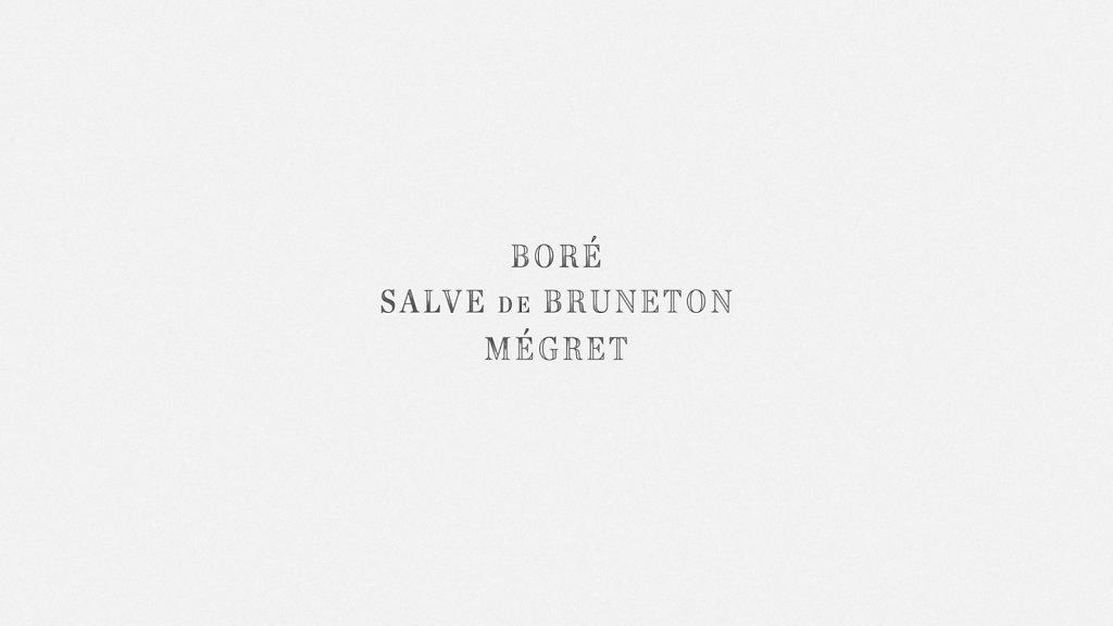 Boré-Bruneton-Mégret